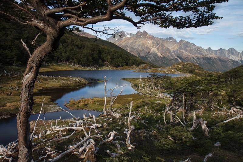 Large Of Tierra Y Fuego