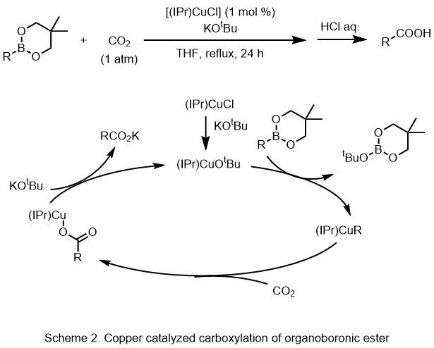 Metal carbon dioxide complex - Wikipedia - carbon bonds