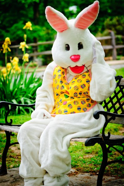 If The Easter Bunny Stopped At UVa