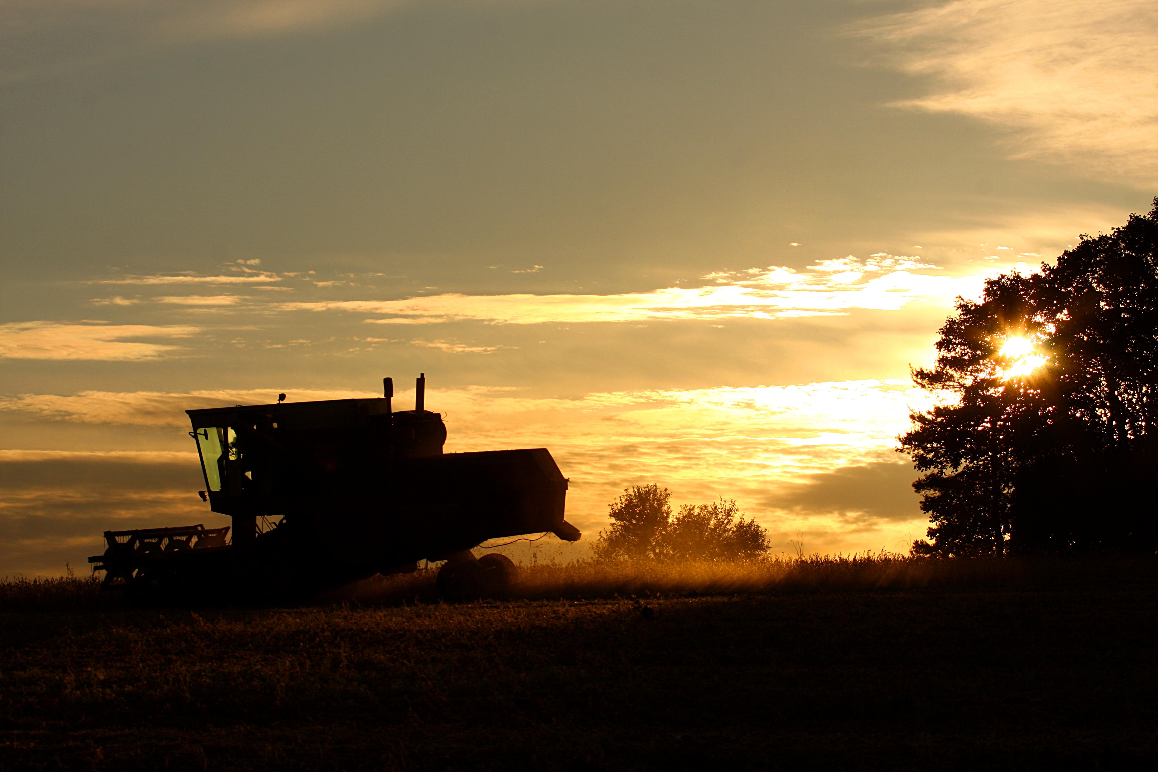 Free Fall Harvest Wallpaper File Ihc International 715 Combine Harvesting At Sunset