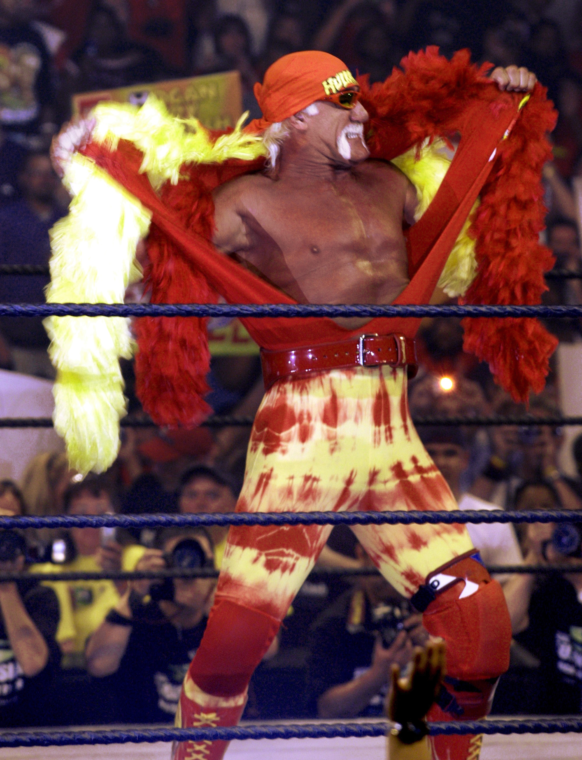 Hulk Hogan Wiki File Hulk Hogan3 Jpg Wikimedia Commons