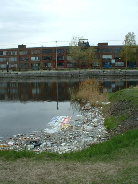 Poluarea Apei Wikipedia