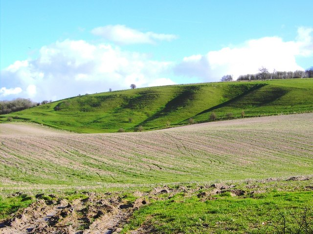 FileLand form, south of Easton Royal, Wiltshire - geographorguk - land form