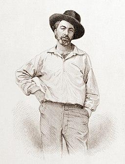 Walt Whitman, steel engraving, July 1854