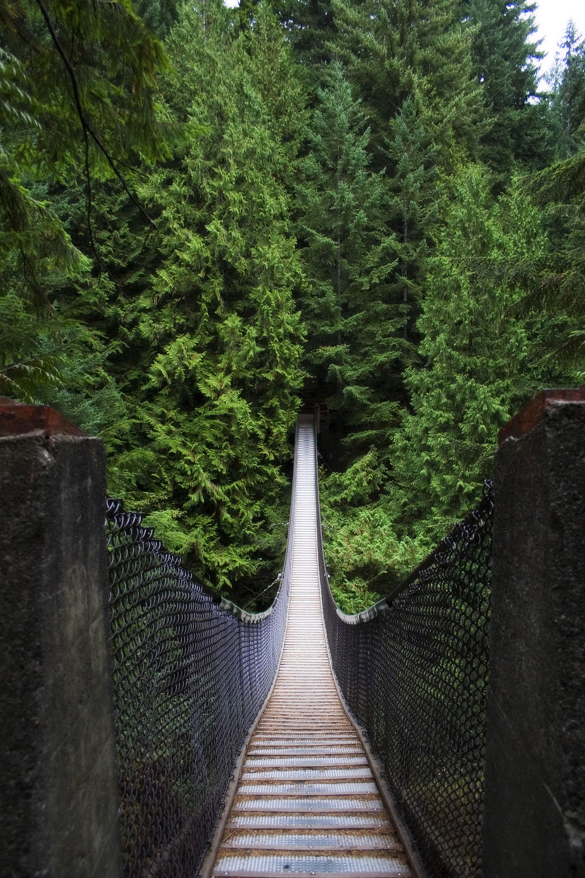Top 3d Live Wallpaper Lynn Canyon Suspension Bridge Wikipedia