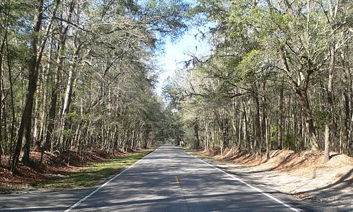 Ashley River Road 1.8 mi N of Bees Ferry Rd