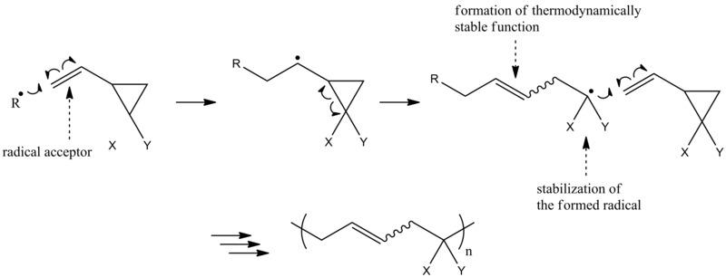 Ring-opening polymerization - Wikipedia