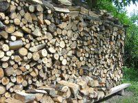 Brennholz  Wikipedia