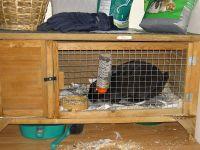 Hutch (animal cage) - Wikipedia