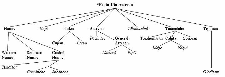 Comparative method - Wikipedia