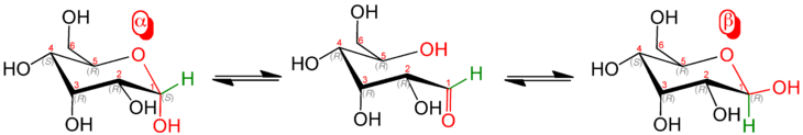 D Mannose Sessel Pyranosen – Wikipedia