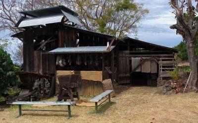 Kona Coffee Living History Farm - Wikipedia