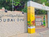 Dubai Zoo Wikipedia