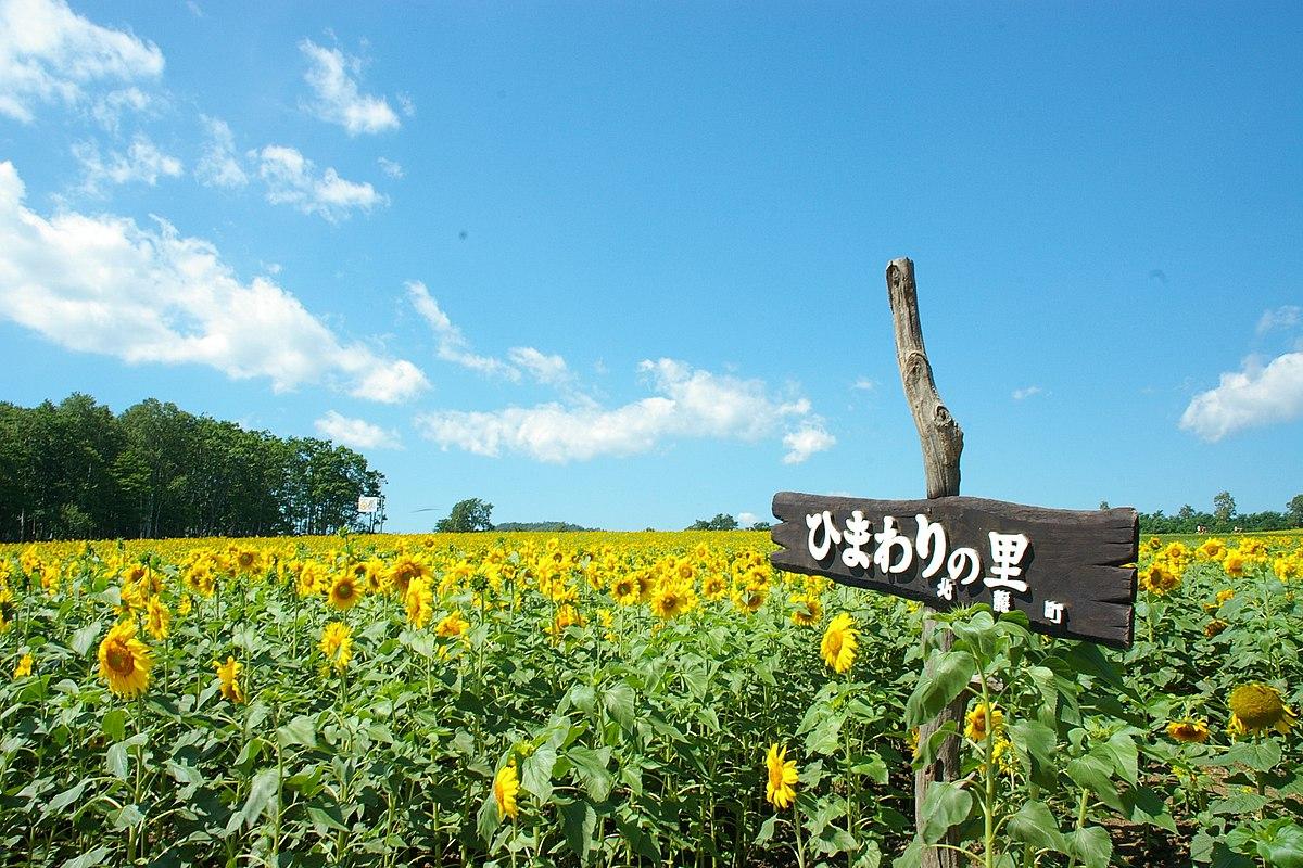 Wallpaper Country Girl Hokuryū Hokkaido Wikipedia