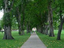 Fall Desktop Wallpaper Images Colorado State University Wikipedia