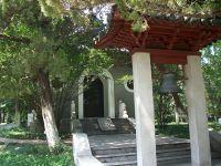 15 Amazing Pergola Ideas for Small Backyards