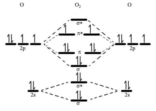 paramagnetic molecular orbital diagram