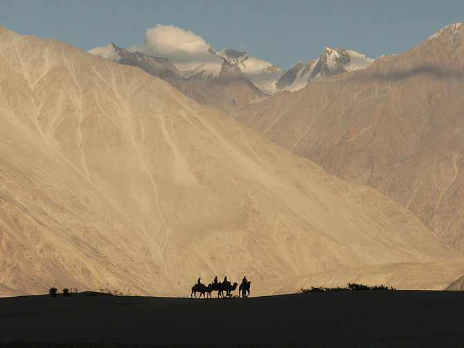 English: Camel trek in the Nubra Valley, Ladak...