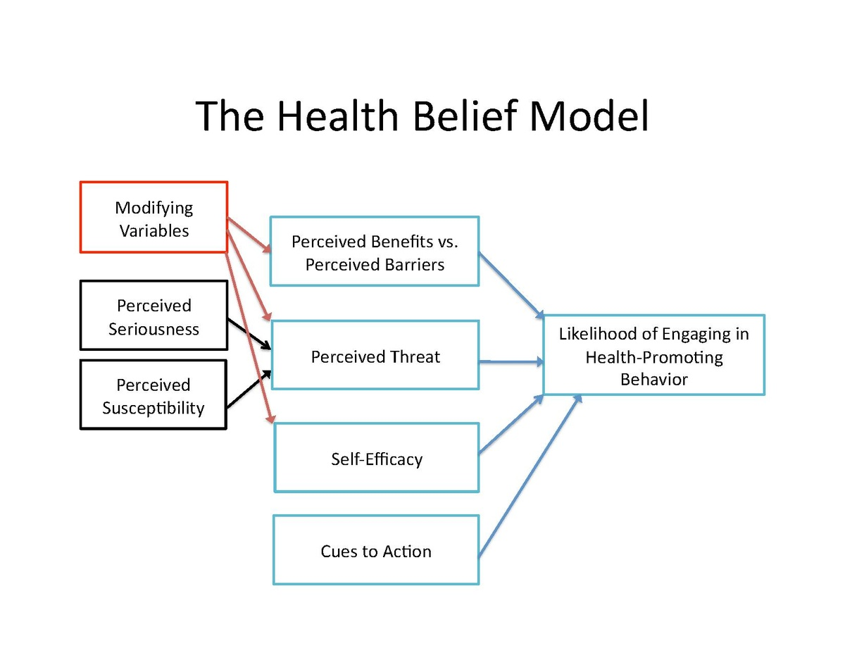 Health Belief Model Wikipedia