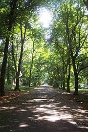 Alexandra Park, Manchester : Map (The Full Wiki)