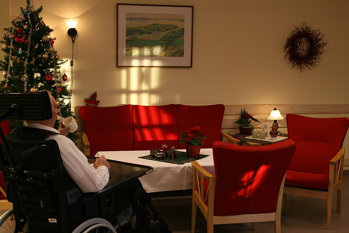 resume to nursing home