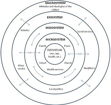 Social ecological model - Wikipedia