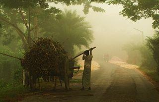Summer Desktop Wallpaper Hd File Winter Morning At Chalknazirpur Natore Bangladesh 3
