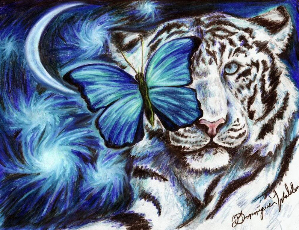Girl Furry Cat Phone Wallpaper File White Tiger And Butterfly Drawing By Myself