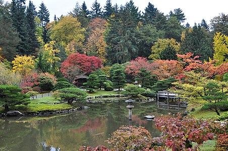 Wallpaper Future Hd Seattle Japanese Garden Wikipedia
