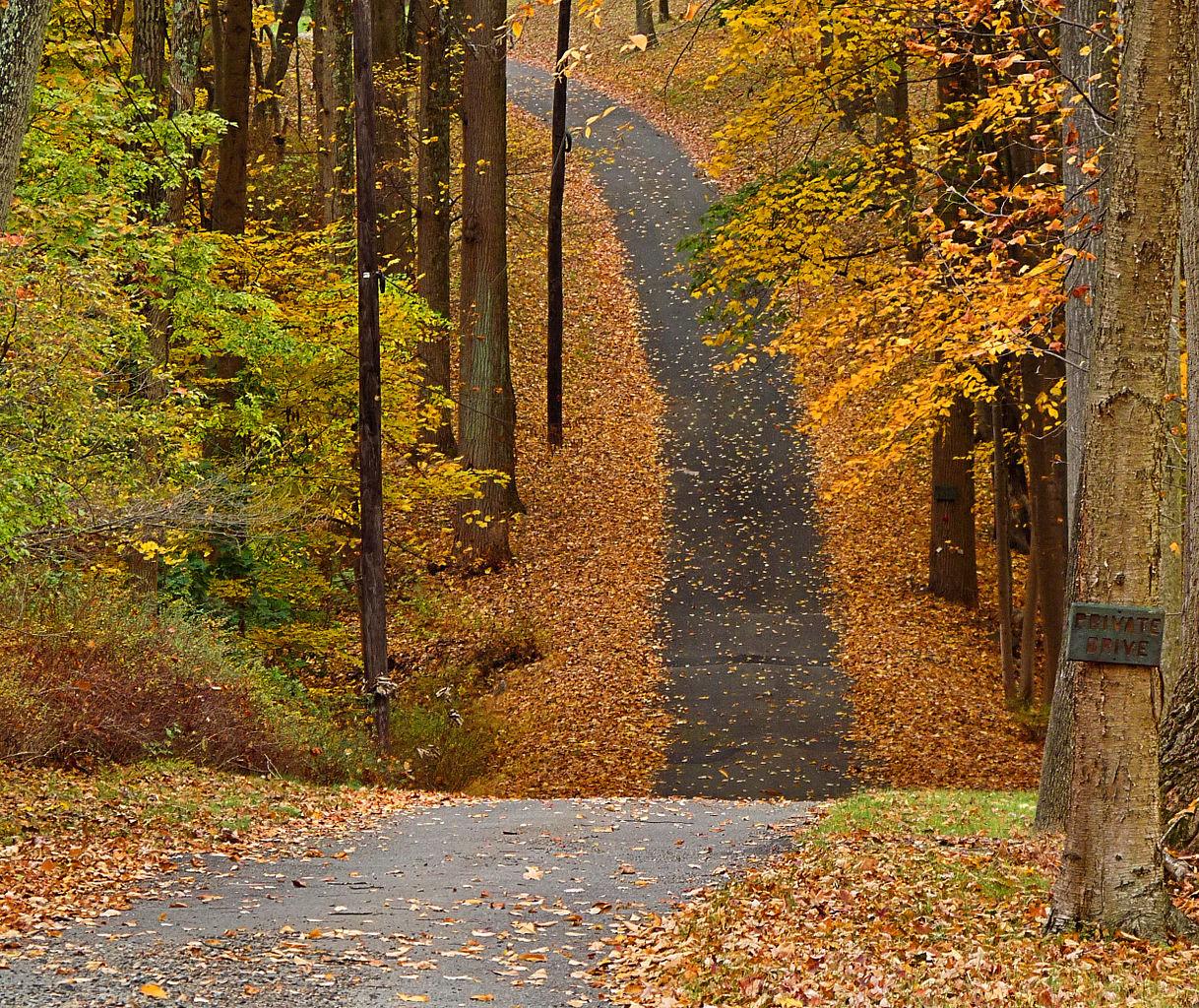 Maine Fall Wallpaper File Basking Ridge New Jersey Jpg Wikimedia Commons