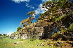 A Wallpaper Fall Provincia De Tierra Del Fuego Ant 225 Rtida E Islas Del