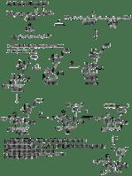 Lovastatin Synthesis