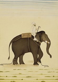 Indian Girl Wallpaper Free Mahout Wiktionary