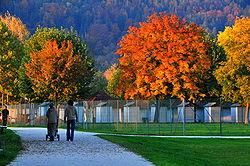 New Hampshire Fall Foliage Wallpaper H 246 St Wikipedia