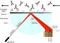 Surface plasmon resonance - Wikipedia