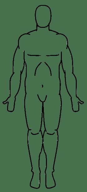 blank human body diagram outline