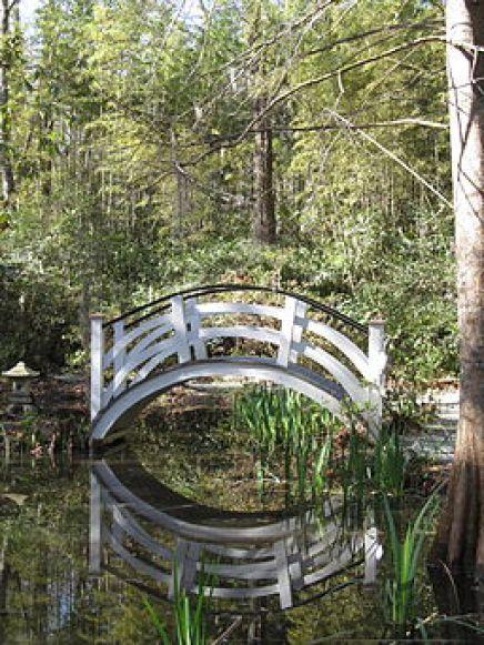 Magnolia Plantation and Gardens - Charleston, South Carolina (8556576156)