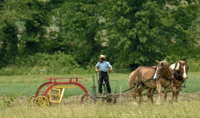 Amish way of life - Wikipedia