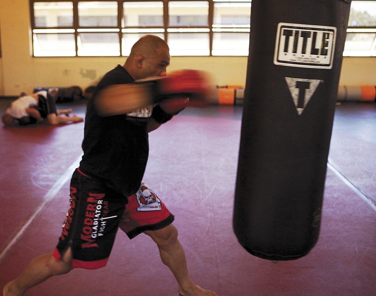 Punching Bag Wikipedia