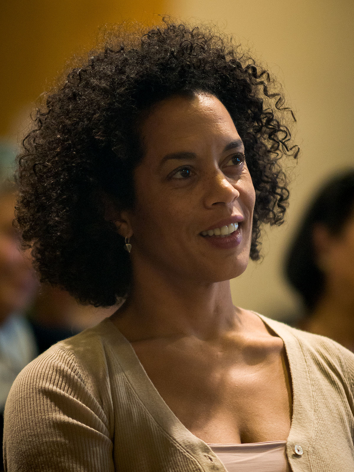 Writing Fiction Aminatta Forna - Wikipedia