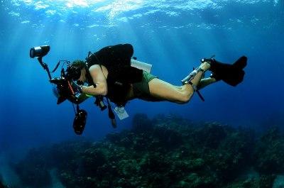 Underwater photography - Wikipedia