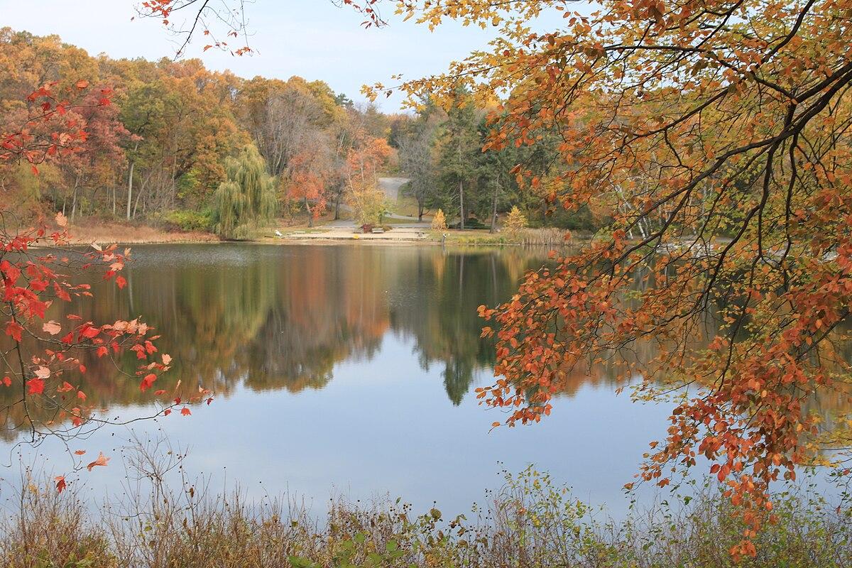 Free Fall Forest Wallpaper Hidden Lake Gardens Wikipedia