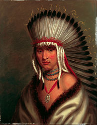 Red Indian Girl Wallpaper Charles Bird King Wikipedia