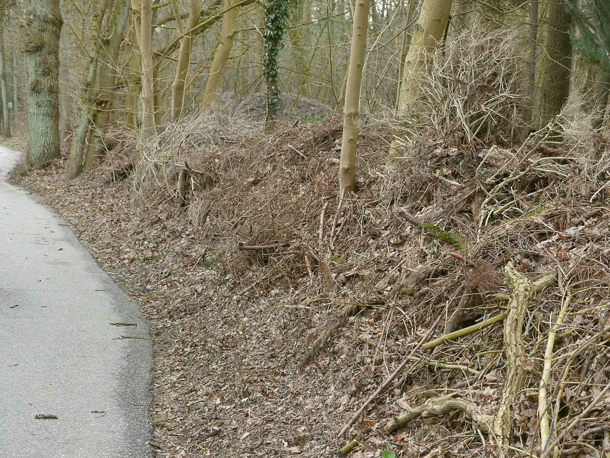 Bank Garten Dead Hedge - Wikipedia