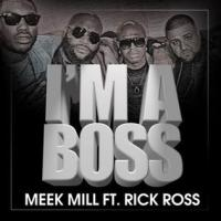 I'm a Boss (song) - Wikipedia