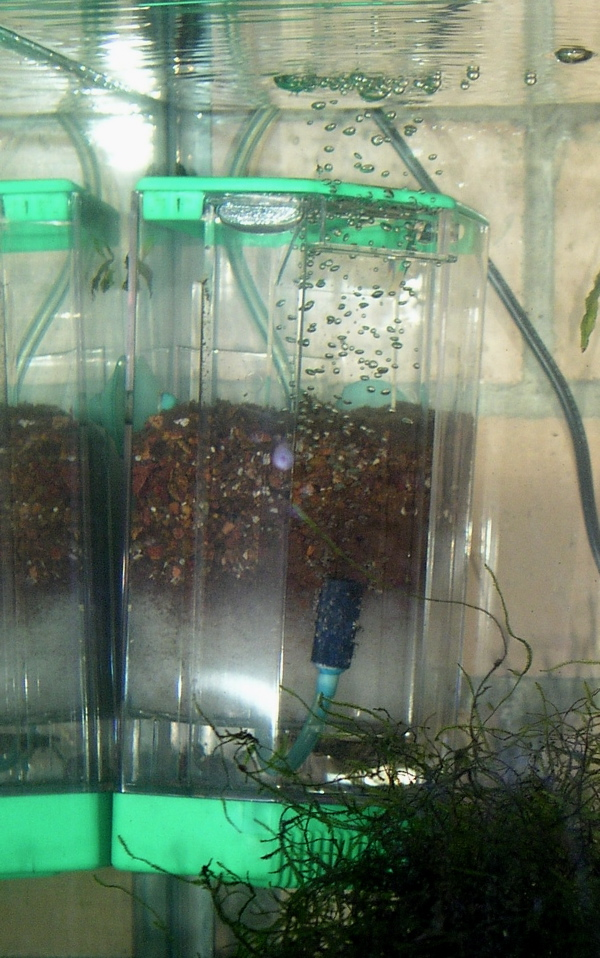 Filter (aquarium) - Wikipedia