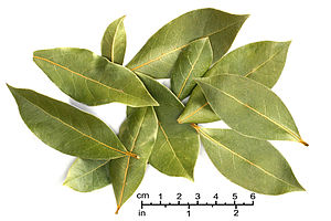 Bay leaves Natural Food Coop