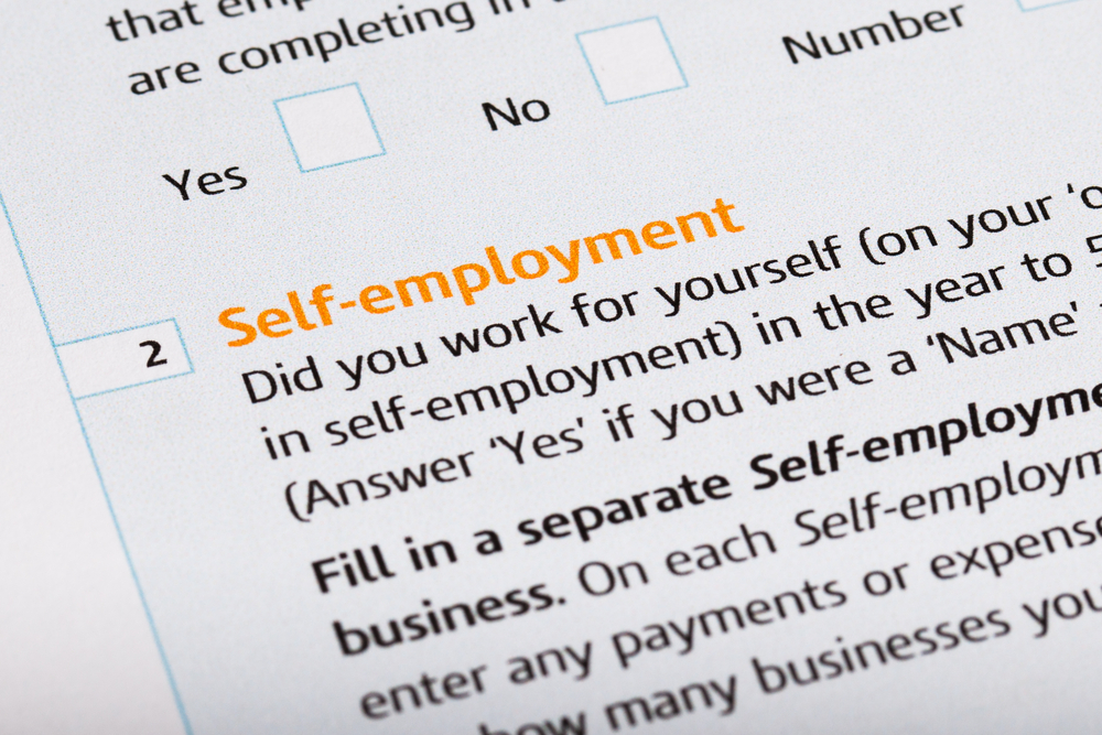 independent contractor profit and loss statement template - Acur - profit and loss statement for self-employed homeowners