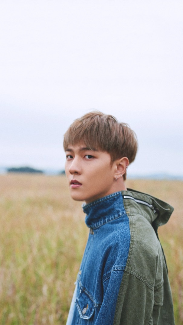 Fall Brithday Wallpaper Dk Ikon Profile And Facts Dk S Ideal Type Updated