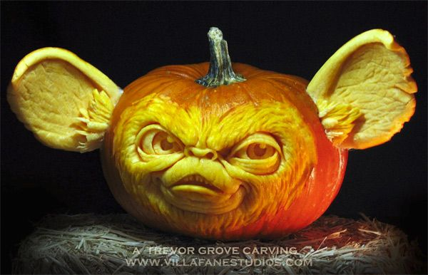 Awesome Quotes Wallpaper Groucho Marx Don T Feed This Jack O Lantern After Midnight Neatorama